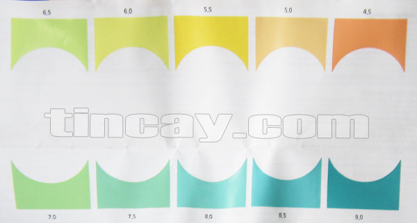 Thang màu Test pH Sera