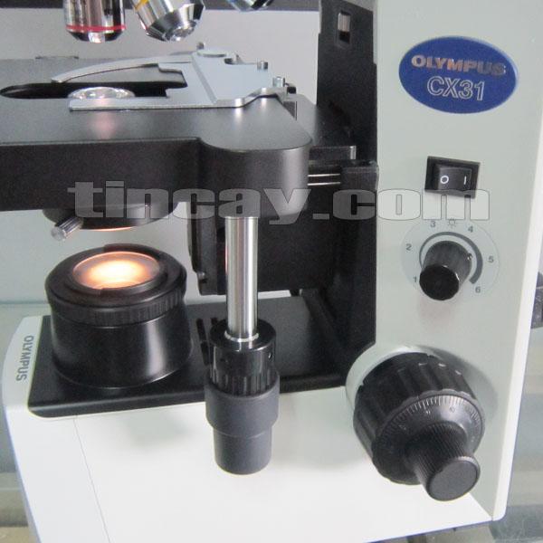 Bàn sa và núm chỉnh Kính hiển vi Olympus CX 31