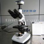 Kính hiển vi sinh học Novex 86041