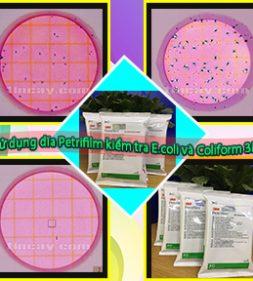 sử dụng đĩa Petrifilm kiểm tra E.coli và Coliform 3M