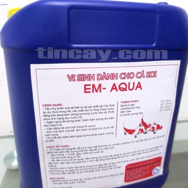 Chăm sóc cá Koi mùa mưa