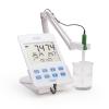 Máy đo pH/ORP Hanna HI2002-02