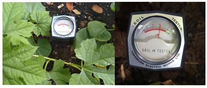 Mua máy đo pH đất Tin Cậy