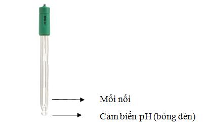 Đầu điện cực pH