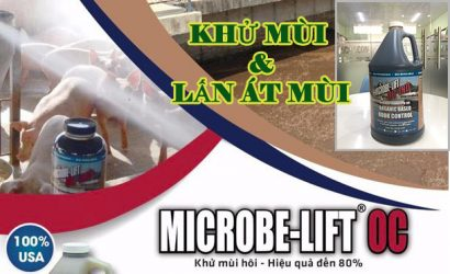 Microbefilt OC khử mùi hôi