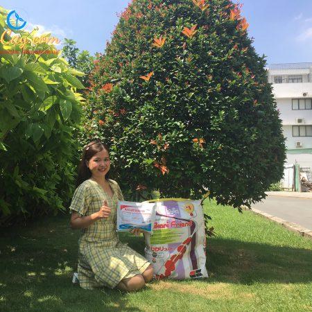 Combo cám cá Koi Hikari Friend (Nhật) và Nova – Anti Shock Fish